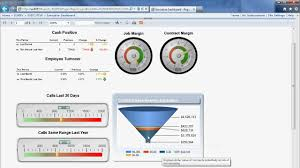 Executive Dashboard With Ssrs