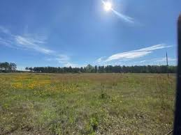 The property is located on the east side of hwy 191. Toledo Bend La Real Estate Homes For Sale Trulia