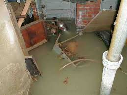 excessive flooding and sump pump