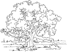 Trees Free To Color For Children Trees Kids Coloring Pages