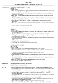 Agile Product Owner Resume Examples
