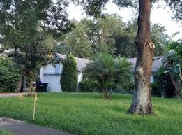 Tlc lawn provides both professional landscape installation and quality landscape management services to a diverse range of clients in southwest florida. 1 Naples Fl Lawn Care Service Lawn Mowing From 19 Best 2021