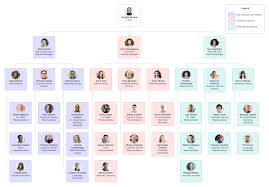 Executive Branch Flow Chart 7 Types Of Organizational Structures Lucidchart Blog