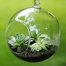 Decorative Hanging Glass Balls Cool Glass Ball Vase Hanging Glass Vase Micro Landscape Air Plant Vase