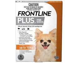 frontline for puppies. Click Image To Enlarge Frontline For Puppies