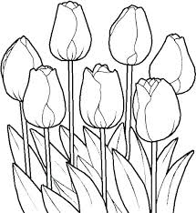 Spring Flowers Coloring Pages Printable Spring Flower Coloring Pages