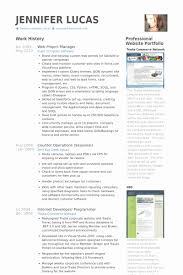 Project Manager Resume Examples Magnificent Web Project Manager Resume Samples Kenicandlecomfortzone