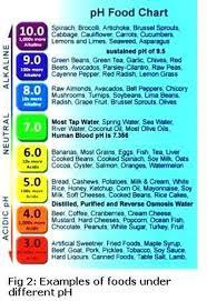 Acid Reflux Food Chart Food Acidity Chart Acid Reflux Diet