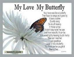 beautiful butterfly pictures with quotes. Simple Pictures Beautiful Butterflies Quotes Images Intended Butterfly Pictures With L