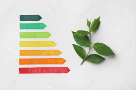 Energy Efficiency Rating Chart And Green Leaves On White Background