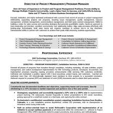Summary For Resume Examples Executive Summary Resume Example Examples Personal Senior Sales 48