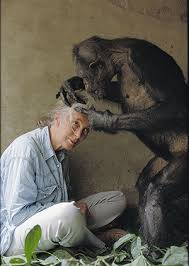 International Women's Day Photos And Quotes From Women Explorers Best Jane Goodall Quotes