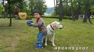 images?q=tbn:ANd9GcQ46guKMdNo5HqpqLtLxe0GkKBxJjBbdmIN2zICXoTeGcPCVsLYow - Южная Корея - обычная жизнь обычных людей