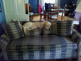 Keep Dogs f Furniture