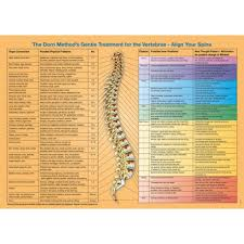 Dorn Method Chart Spine Organ Connections Poster English Download