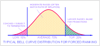 Bell Curve Distribution of Employee Performance