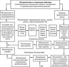 ОБЕСПЕЧЕНИЕ БЕЗОПАСНОСТИ В УСЛОВИЯХ ЧРЕЗВЫЧАЙНЫХ СИТУАЦИЙ  Структура системы управления природным и техногенным рисками