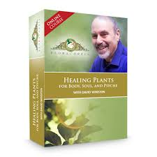 plants that heal by david crow healing plants for body soul and psyche