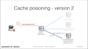Dns Security Cache Poisoning