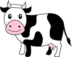 cow seed cowz ii cowz ii image