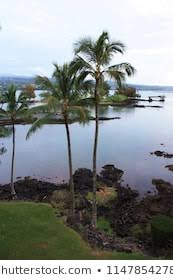 Hilo Bay Stock Photos Images Photography Shutterstock