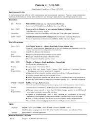 Modelo De Curriculum Vitae Ingles Modelo De Curriculum Vitae