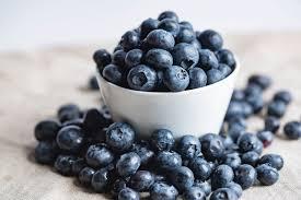 Hasil gambar untuk bilberry dan blueberry
