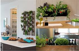 Indoor Kitchen Gardens 52 Astounding Indoor Garden Ideas To Beautify Your Interiors Naturally