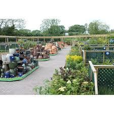 mappleborough green garden centre
