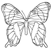 Più Recente Farfalle Da Colorare E Stampare Disegni Da Colorare