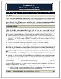 Sales And Marketing Resume Samples 100 Sample Marketing Manager Resume Riez Sample Resumes Riez 64