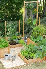Backyard Raised Garden Designs Best 20 Vegetable Garden Design Ideas For Green Living