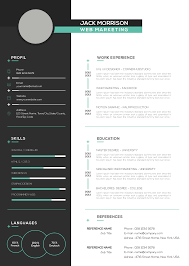 Download Premium Professional Resume Cv Template