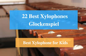 22 Best Xylophone Reviews 2019 Best Xylophone For Kids And