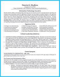 Cto Resume Example Cto Resume Examples Savebtsaco 7