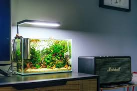 Onf Flat One Light Onf Flat Nano Aquarium Light White Led Dimmable Full