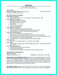 Template Computer Programmer Resume Examples To Impress Employers