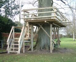 tree house plans for adults. Adult Tree House Plans Photo - 2 For Adults