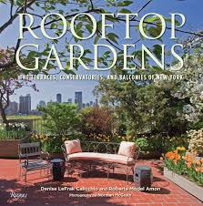 the book cover one coffee table book reveals new york