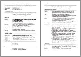 curriculum vitae layout template how to write a cv 18 professional cv templates examples