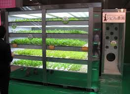 Vending Machine Future Extraordinary Dentsu Vending Machine Grows 4848 Heads Of Lettuce A Year Colossal
