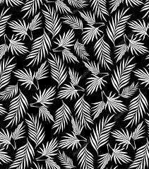 Zwart Wit Palm Bladeren Patroon Stockvector Vecture 97363596