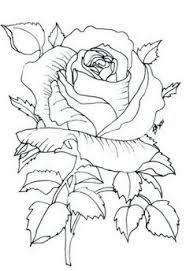 roos applique patternsflower patternsflower designsdraw flowerscoloring pagescoloring bookswoodburningdrawing