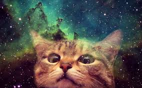 1920x1200 awesome cats in space wallpapers caveman circus caveman circus