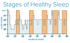 Normal Sleep Pattern Enchanting Stages Of Sleep The Center For Sound Sleep