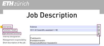 Work Description Form Form Job Description Services Resources Eth Zurich