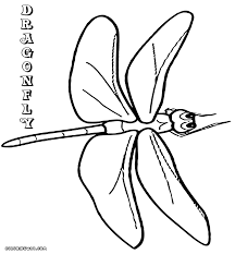 Small Picture Dragonfly Coloring Pages Coloring Page