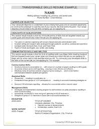 Sample Of Chronological Resume Format With Resume Examples Skills