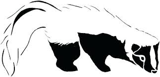 Cute Skunk Coloring Pages Coloring Pages Cartoon Skunk Coloring Page