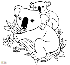 Small Picture Koala Coloring Page Sheet Booksforkids Pictures 6347 Throughout